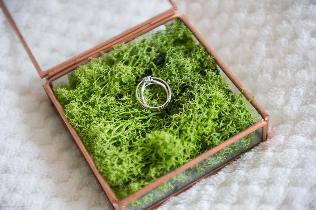 Les bagues de mariage dans une belle boîte en acier et en verre