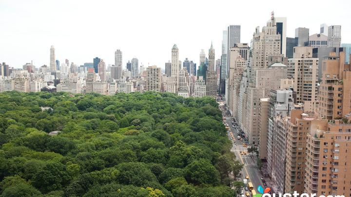 These 8 N Y C Hotels Offer Views Of Central Park Photos