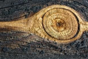 Ögat ser och minns, Bonnstan i Skellefteå- Margareta