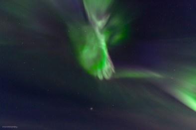norrsken-100-l