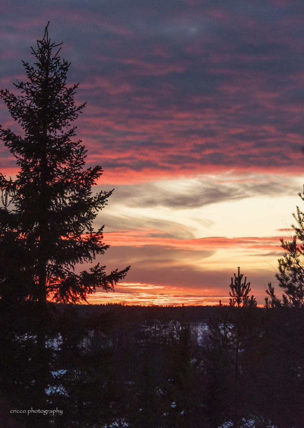 4 december - Cricco Solnedgång
