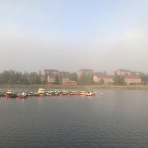 Dag 4 Njuter av cykelturen till jobbet, det är vackert när solen bryter igenom dimman.