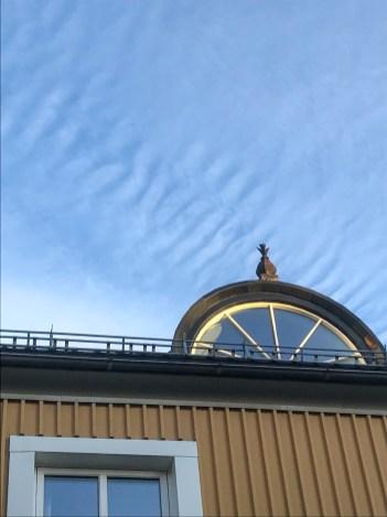 Takåsarna i Luleå - av Eva