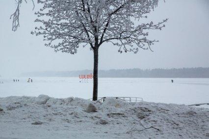 Isbanan - av Luleå