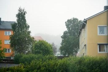 Morgonutsikten genom kontorsfönstret, första höstdagen? -av Margareta