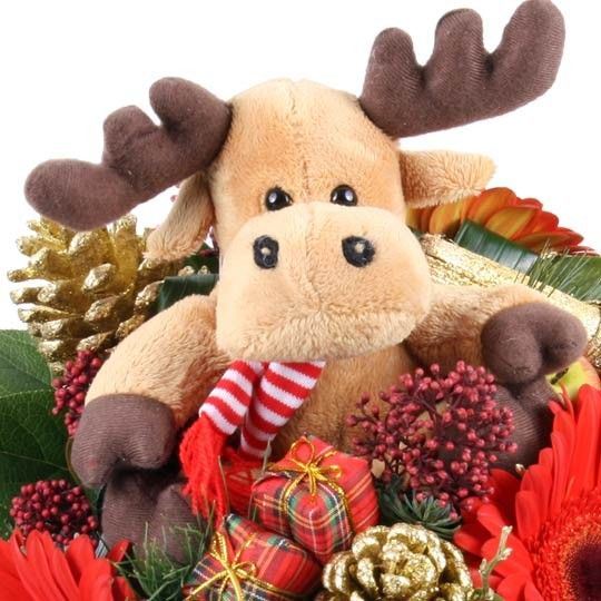 WeihnachtsElch Blumenstrau Olson mit GratisVase online