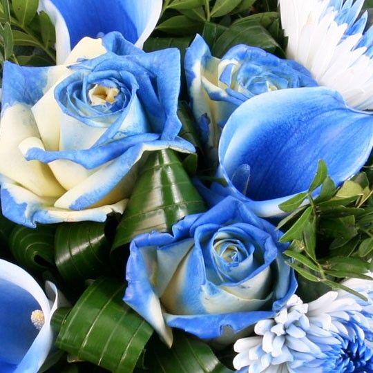Blumenstrau  Blaues FarbenSpektakel Pur
