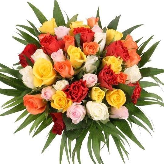 Blumenstrau 40 Rosen im FarbMix mit 3 Gratiszugaben