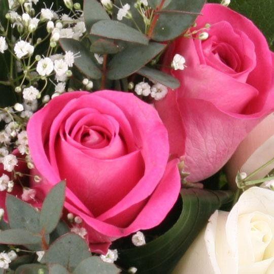 Blumen Verschicken Online Usa