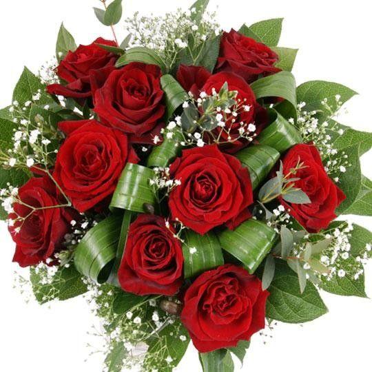 Blumenversand von roten PremiumRosen mit einer