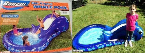 Whale-Fail-Pool