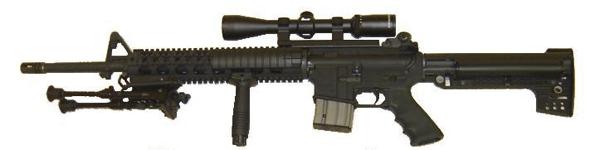 AR15555