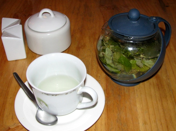 Cocatea