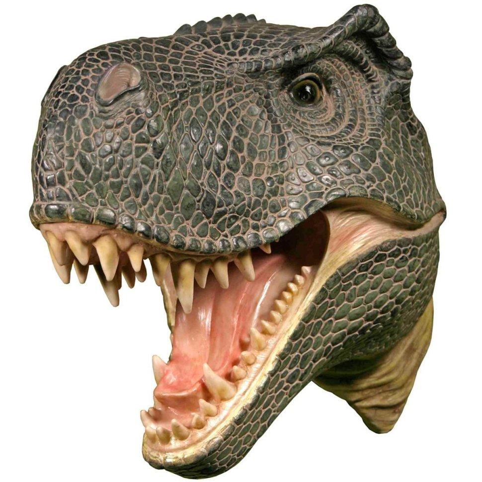 """""""Lifelike"""" wall-mounted T. Rex head"""