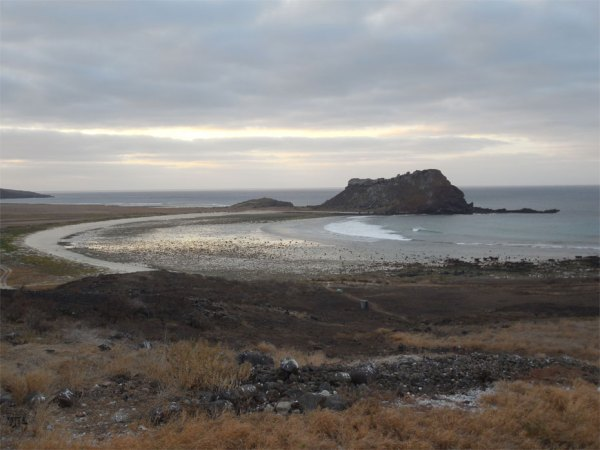 This view of Sulphur Bay at sunrise shows the area where Mulcahy retraced the steps of naturalist William Beebe nearly eighty years after his expedition to Clarion, and found evidence that the nocturnal Clarion Nightsnake continues to live on the island today. The Clarion Nightsnake, which was initially discovered in the first half of the 19th century and then struck from the scientific record, was rediscovered and declared a new species by National Museum of Natural History researcher Daniel Mulcahy and a team of Mexican scientists led by ecologist Juan Martínez-Gómez in May 2014. (Photo courtesy of Daniel Mulcahy)