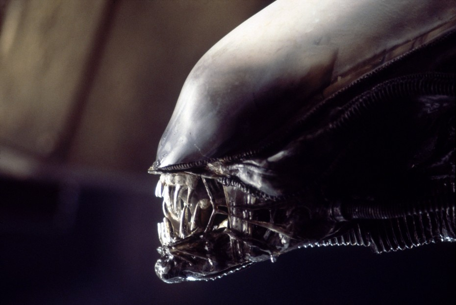 The 'Alien' developed by Giger for film.
