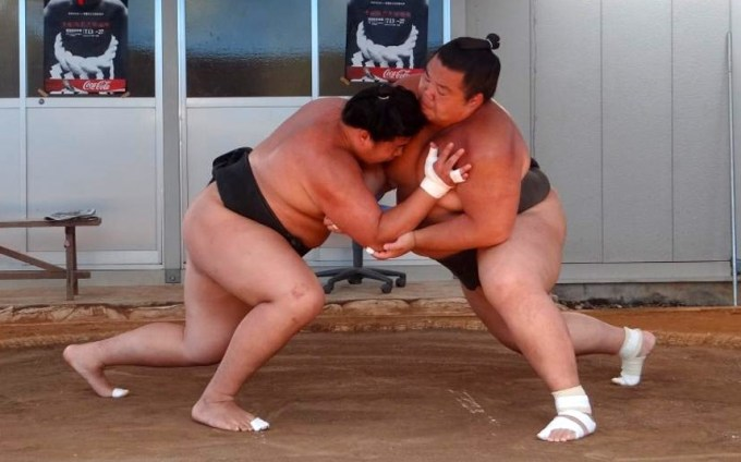 sumo-wrestle_2991958k