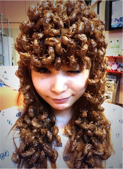 Cicada hairstyle  Boing Boing