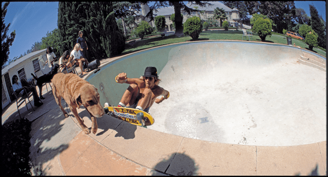 "Jay Adams, DogBowl, Santa Monica 1977. Photo: Glen E. Friedman, from ""My Rules."""