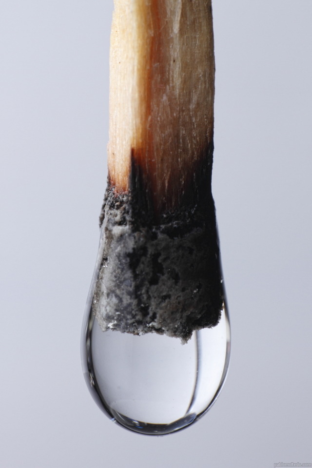 pablo-moltedo-macro-fosforo-agua