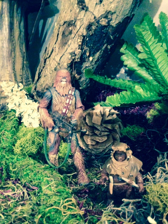 Chewbacca and his Ewok friend. Yes, I'm obsessed with Wookiees too.