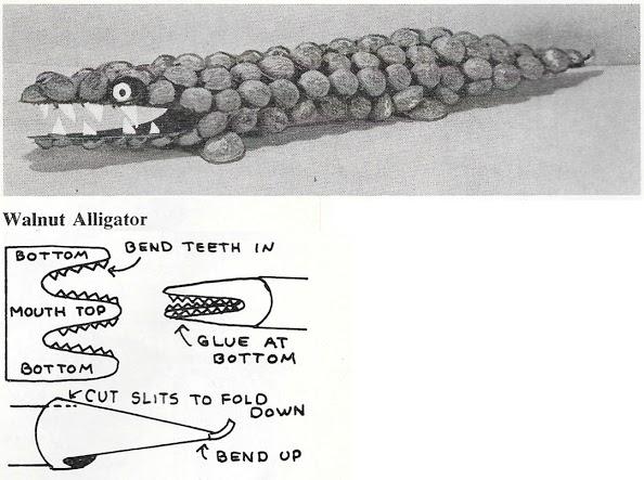4. Walnut_Alligator