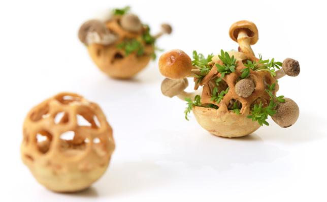 Edible-Growth-by-Chloe-Rutzerveld_dezeen_06_644