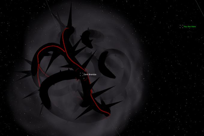 dark-bramble