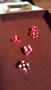midwest_dice22