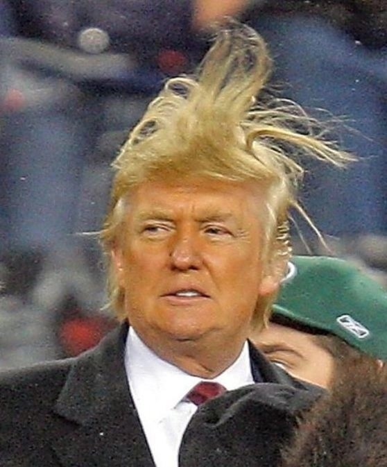 https://i0.wp.com/media.boingboing.net/wp-content/uploads/2015/07/trump-hair.jpg