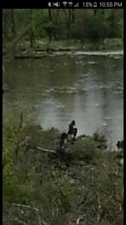 Photo of Bigfoot taking a poop