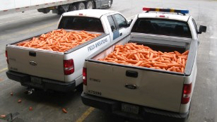 160113182556-marijuana-carrots-texas-border-patrol-in-trucks-medium-plus-169