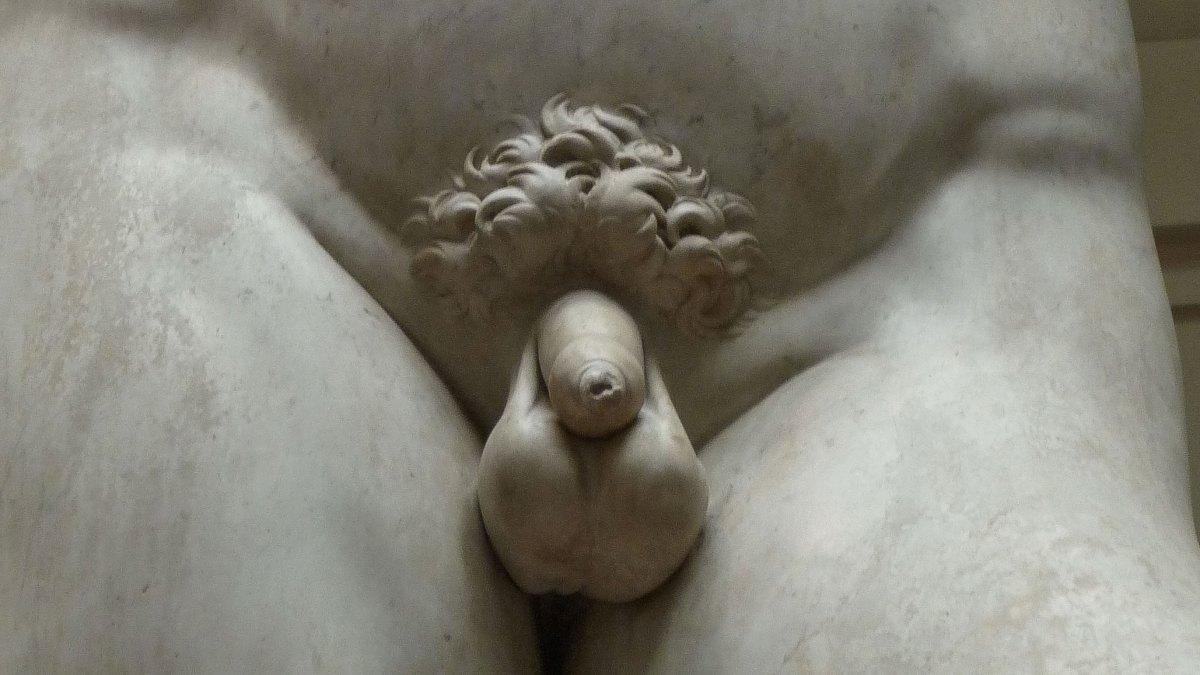 perfect erect male nude