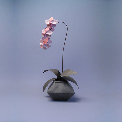 orchid-origami_500