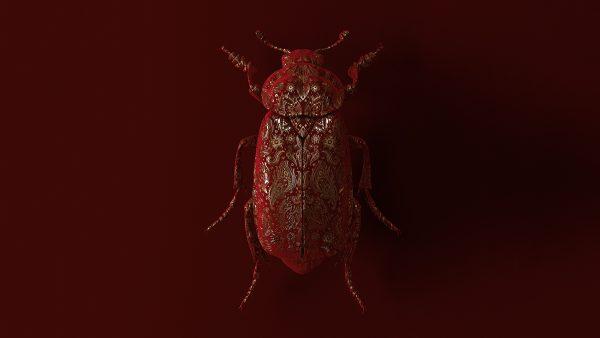 engraved-entomology-02