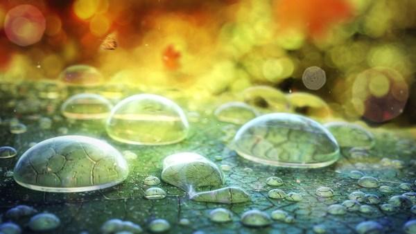 water-drops-seccovan-02