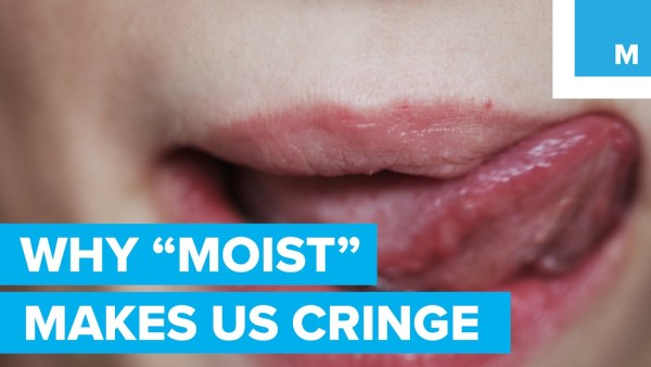 Heres why people hate the word moist