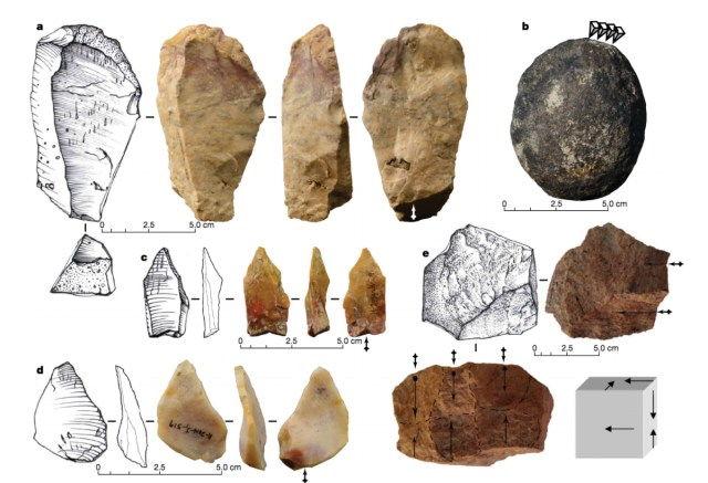 Butchered rhino points to hominin activity in The Philippines over 700,000 years ago