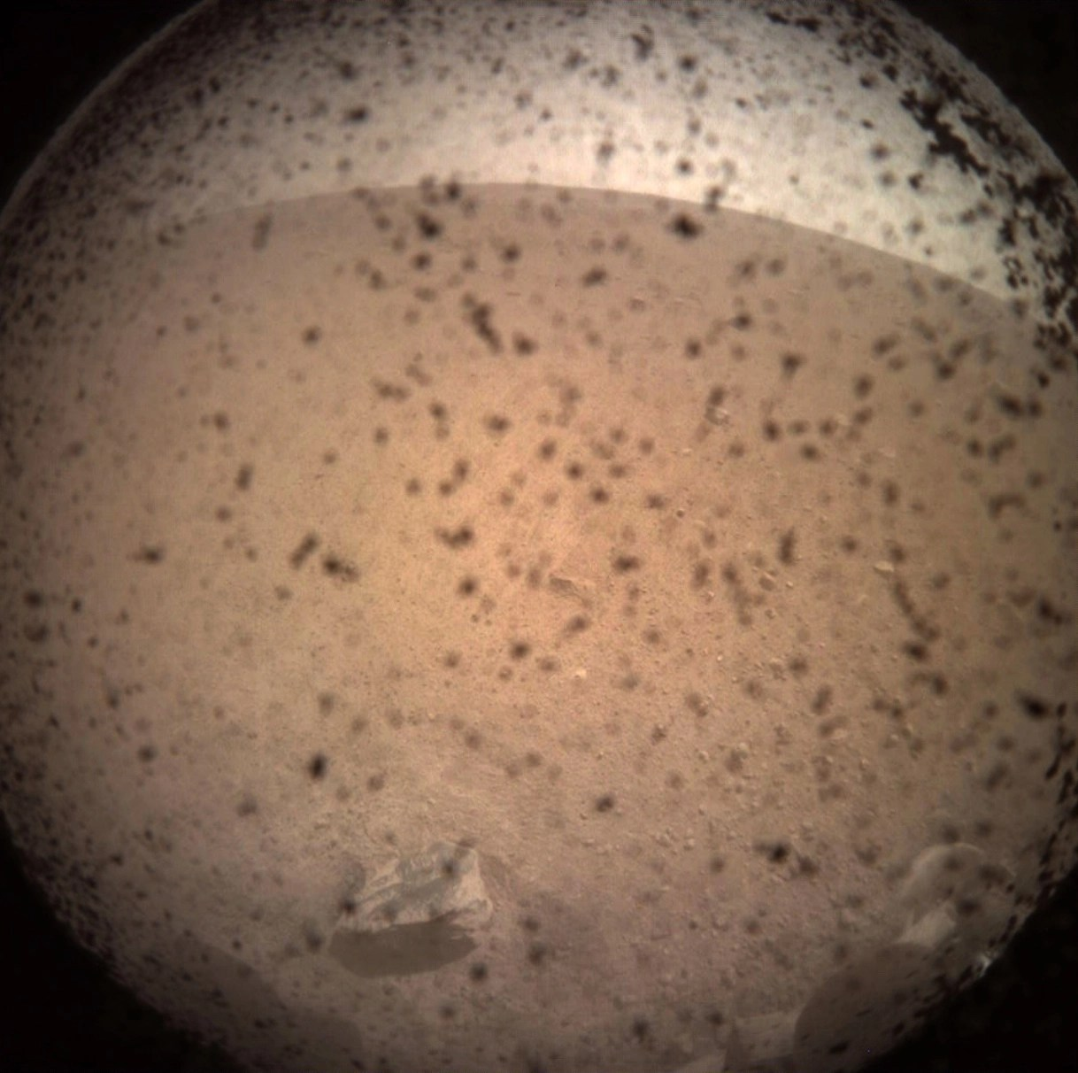 The first image InSight transmitted after landing on Mars on 11/26/2018