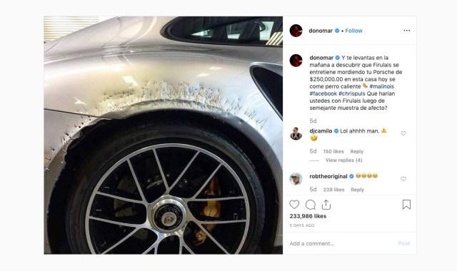 Dog tries to eat $250,000 Porsche