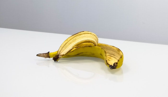After passenger told U.S. Customs agent that her suitcase once held a smashed banana, she was detained and added to a watch list