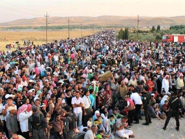 Image result for diseased refugees