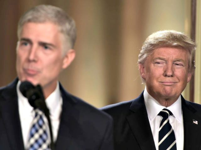 Image result for Judge Neil Gorsuch