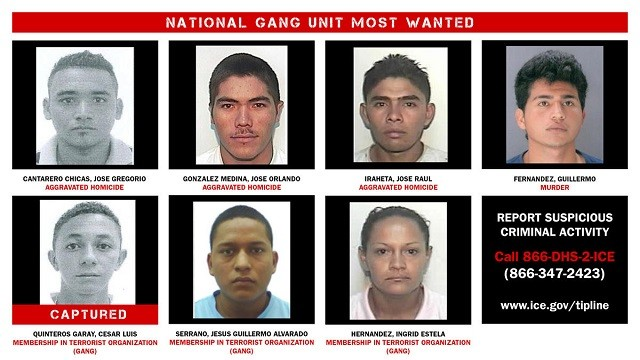 Operation Raging Bull - Most Wanted List - ICE