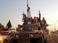 """In this June 23, 2014 file photo, fighters from the Islamic State group parade in a commandeered Iraqi security forces armored vehicle on the main road in Mosul, Iraq. In a statement Thursday, May 10, 2018, coalition spokesman Army Col. Ryan Dillon said that U.S.-backed Syrian forces have captured five senior Islamic State group leaders. Dillon called the arrest a """"significant blow to Daesh,"""" using the Arabic acronym for the extremist group. (AP Photo, File)"""