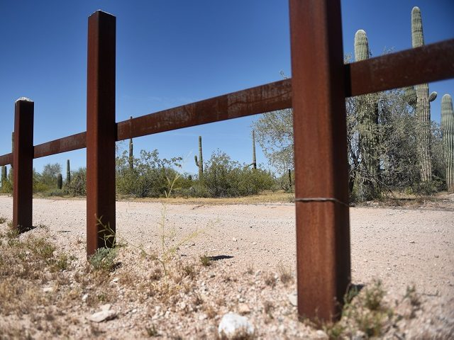 Cacti are seen near the metal fence along the border in Sonoyta, Sonora state, northern Mexico, between the Altar desert in Mexico and the Arizona desert in the United States, on March 27, 2017.