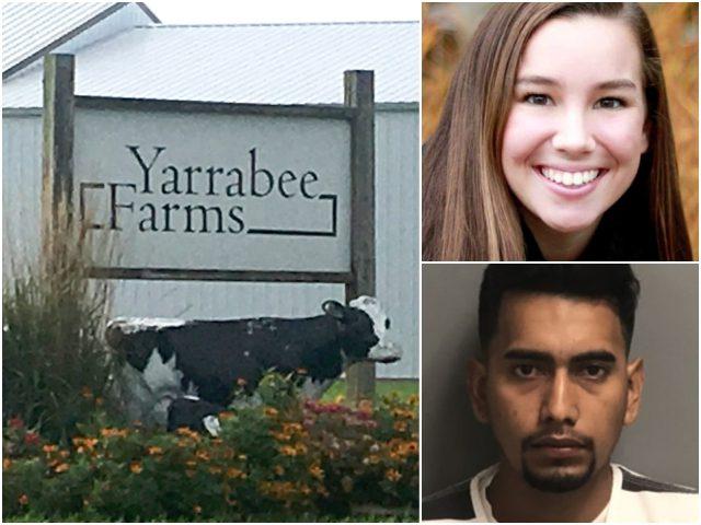 Mollie Tibbetts-Bahena-Rivera-Yarrabee Farms