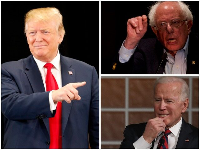 Image result for images of trump, biden and sanders