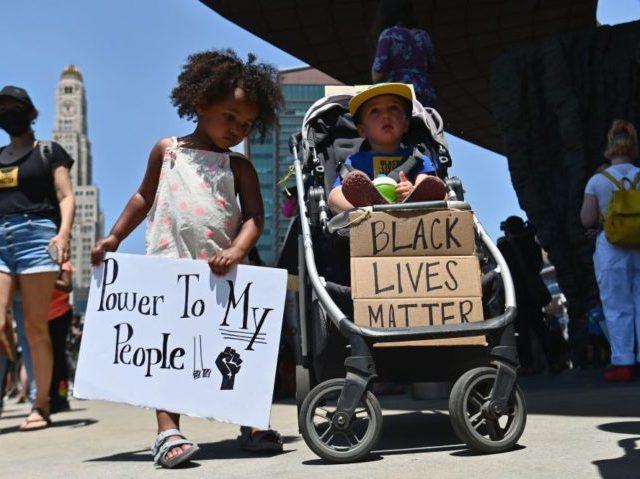 Minnesota School Board…'Black Lives Matter' Is 'Government Speech'