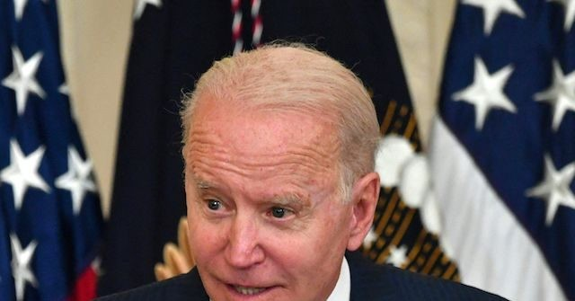 , Joe Biden Suggests All Latinos Are Deportable Illegals, Nzuchi Times Breitbart